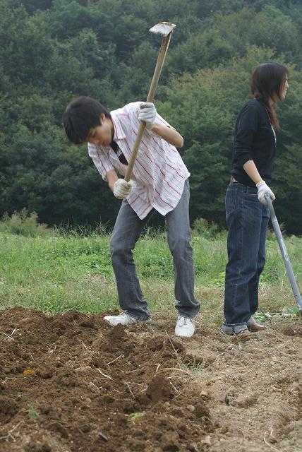 耕し2.jpg